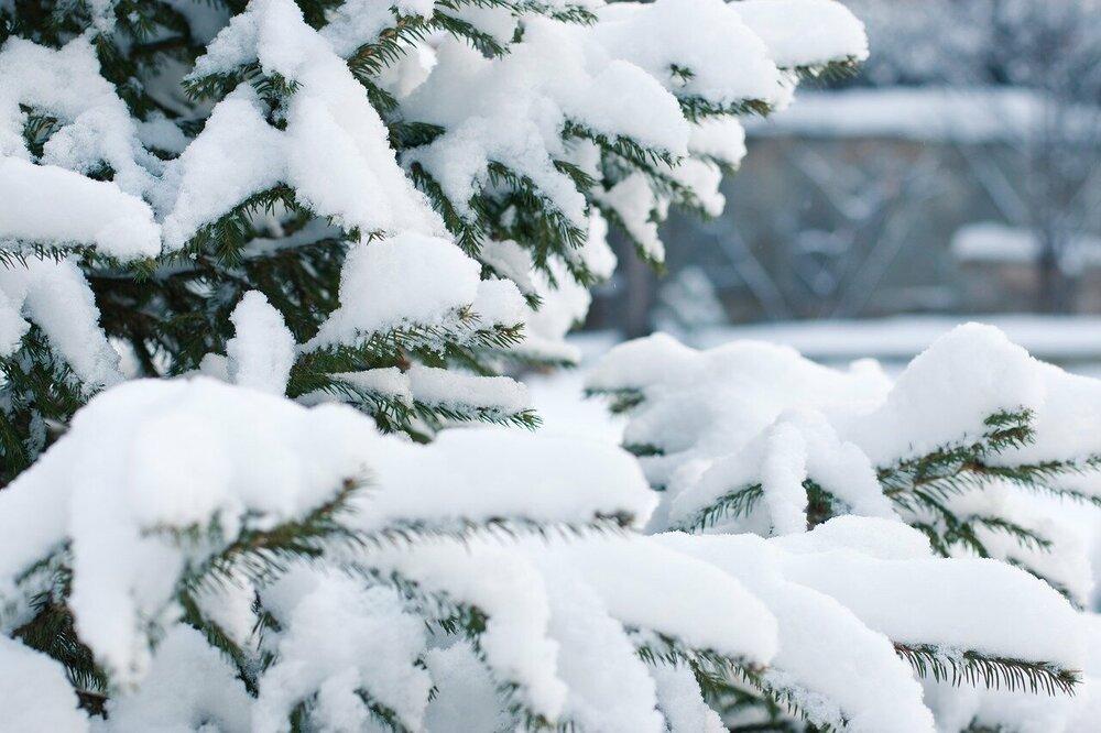 Kans op sneeuw in de Alpen neemt toe